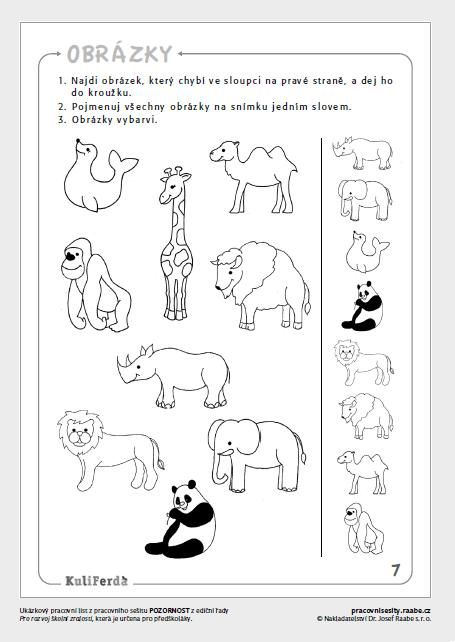 204 Best Animales Salvajes Images On Free Worksheets Samples