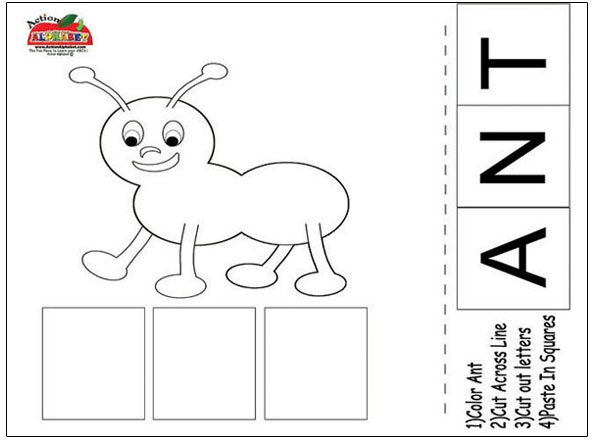 Ant Worksheet