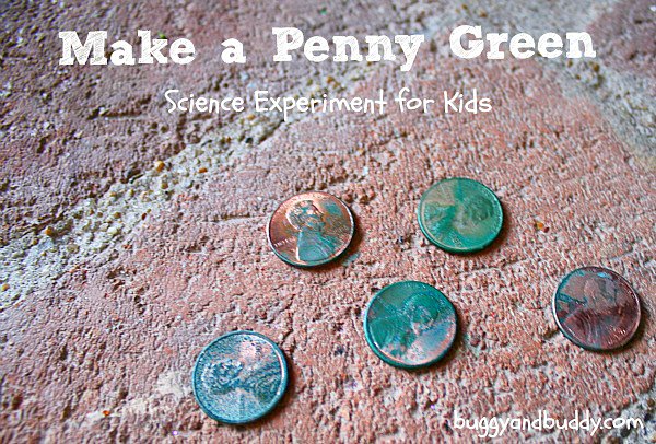 Chemical Reactions  Make A Penny Turn Green (with Free Printable
