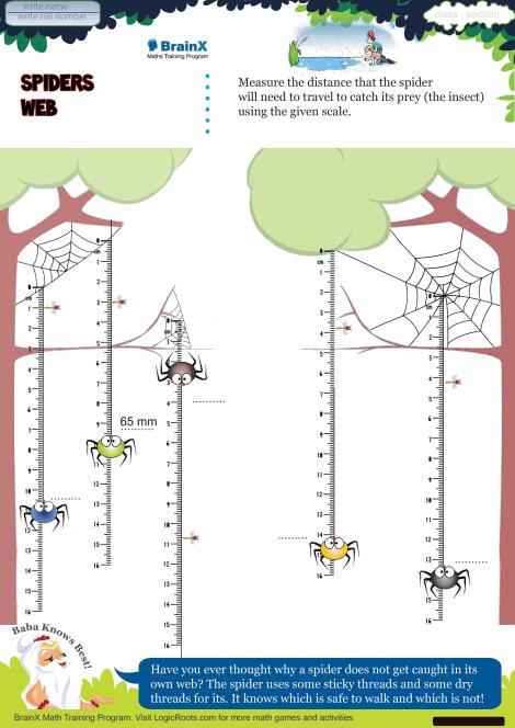 Spiders Web Math Worksheet For Grade 4