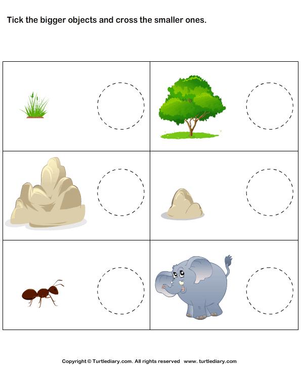 Tick Bigger Objects Cross Smaller Objects Worksheet