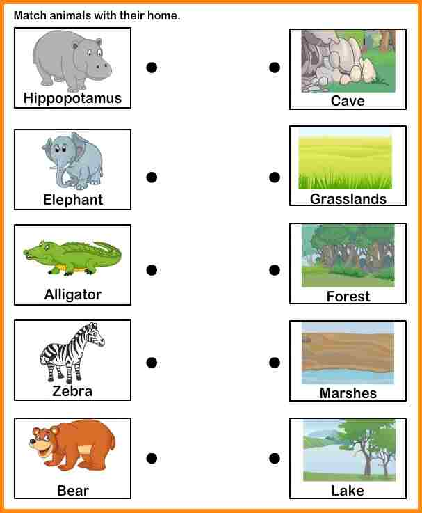 6+ Animal Habitats Worksheets