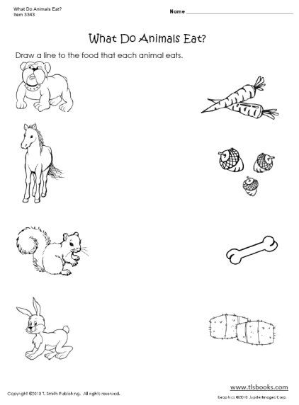 9 Best Zoo Animals Images On Free Worksheets Samples