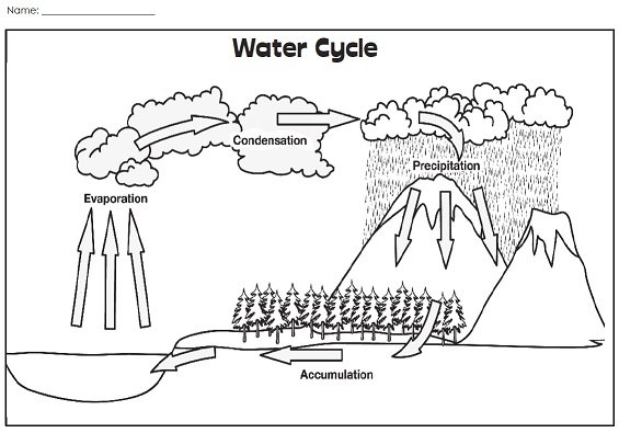 A Water Cycle Illustration