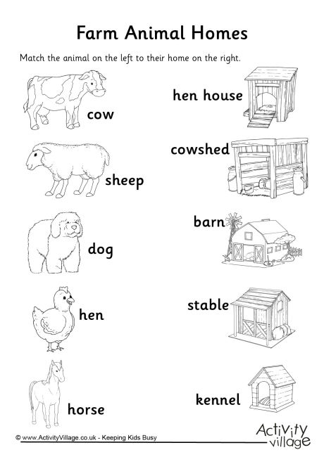 Animal Homes Matchup Worksheet