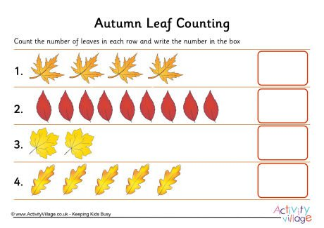 Autumn Leaf Counting 1