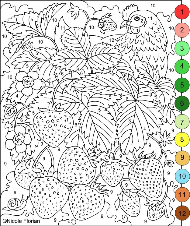 Best 25+ Adult Color By Number Ideas On Free Worksheets Samples