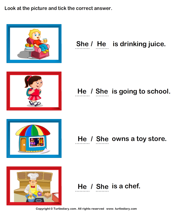 Choose She And He From The Pictures Worksheet