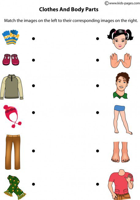 Clothes And Body Parts Worksheet