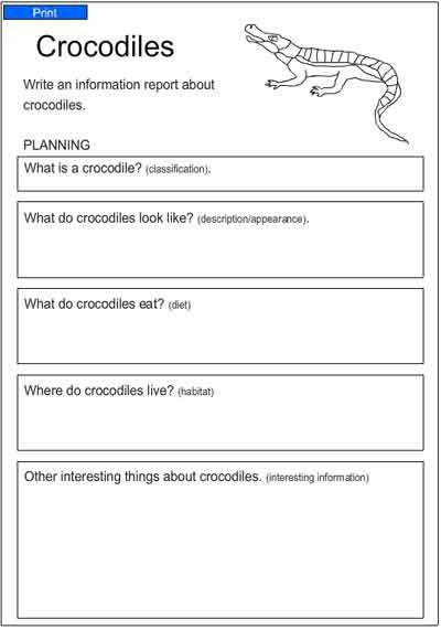 Crocodiles, English Skills Online, Interactive Activity Lessons