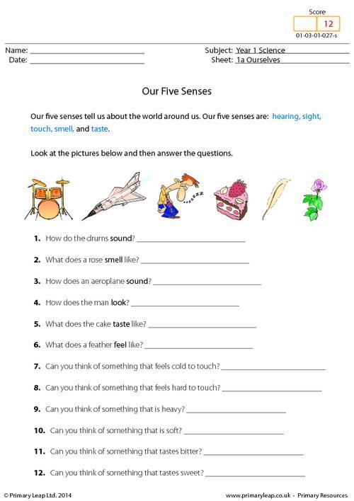 Five Sense Worksheet