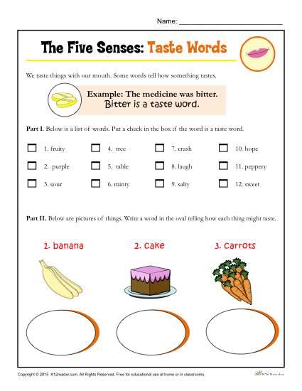 Five Senses Activity For Kindergarten And 1st Grade