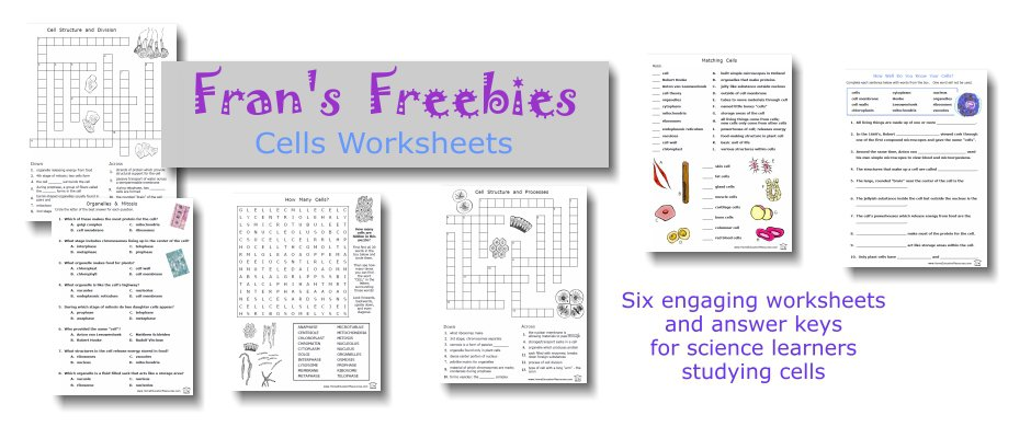 Fran's Freebies  Cells Worksheets – Home Education Resources