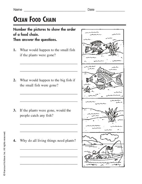 Ocean Food Chain Worksheet Free Worksheets Library
