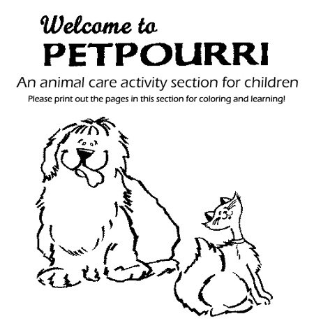 Pet Care Activities   Worksheets For The 3 Cheers For Animals