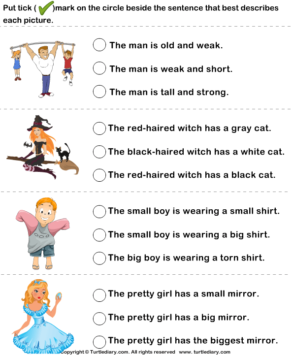 Sentence Describing Pictures Worksheet