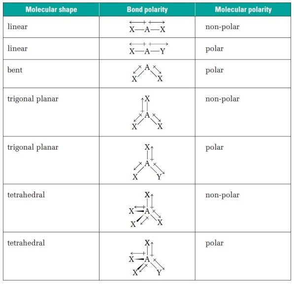 Shapes Of Molecules Worksheet Free Worksheets Library