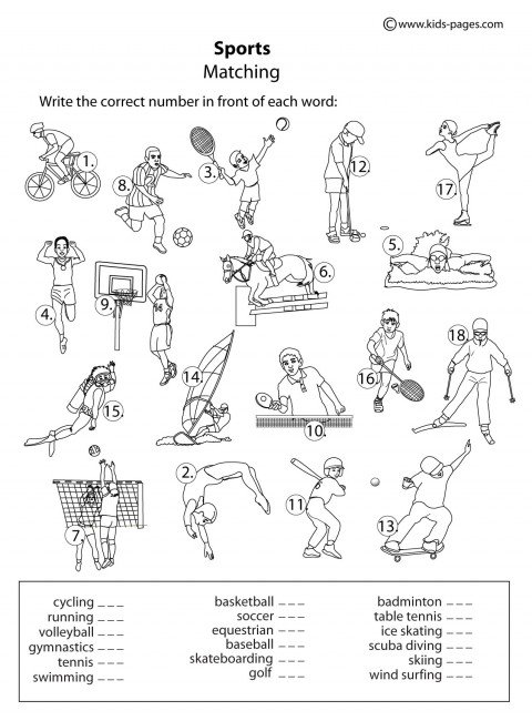 Sports Matching B&w Worksheet