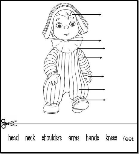 Teach English And Enjoy  Vocabulary  The Parts Of The Body