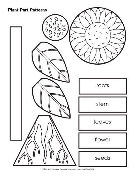 This Resource Could Be Incorporated Into A Plant Unit In