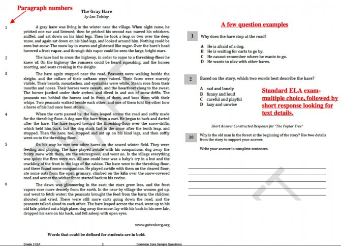 Worksheet Templates   Pearson Education Inc Biology Worksheets