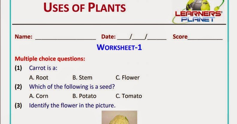 Xseed Worksheets For Grade 1