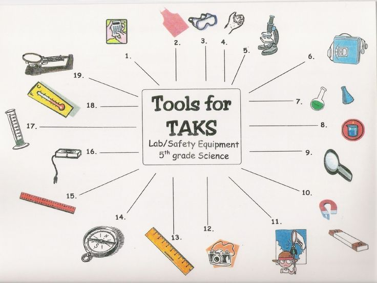 12 Best Science Tools Images On Free Worksheets Samples