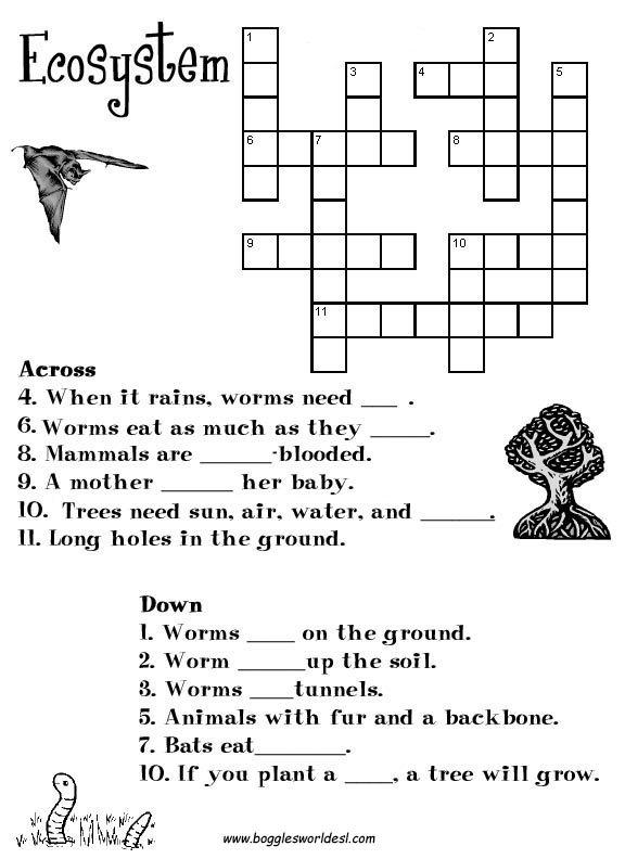 5th Grade Ecosystem Worksheets Worksheets For All