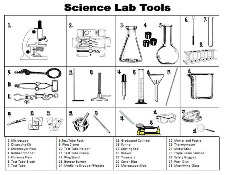 62 Best Lab Glassware Images On Free Worksheets Samples
