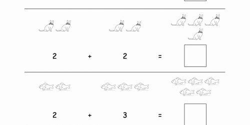 Basic Math Worksheets Adults