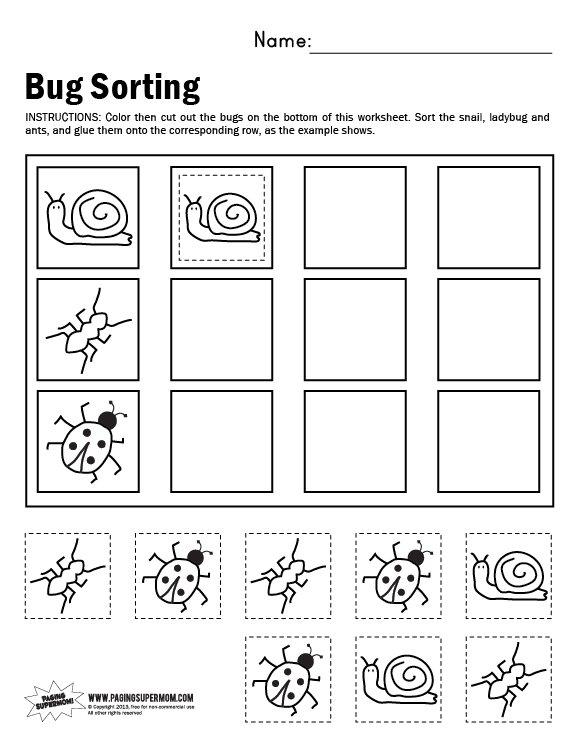 Bug Sorting Worksheet