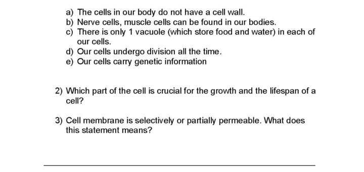 Cell Transport Worksheet Photosynthesis Making Energy Worksheet