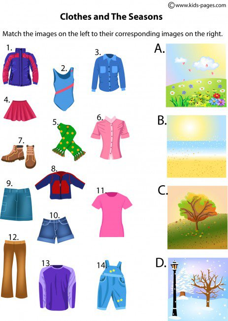 Clothes And The Seasons Worksheet