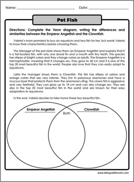 Compare Contrast Worksheets 4th Grade Worksheets