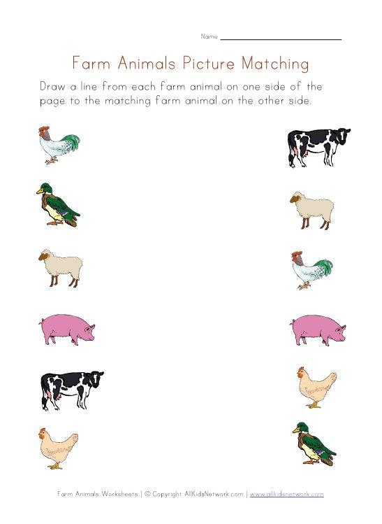 Farm Matching Worksheet