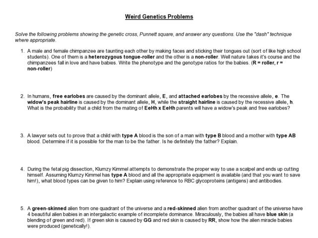 Genetics Problems Worksheet And Answers