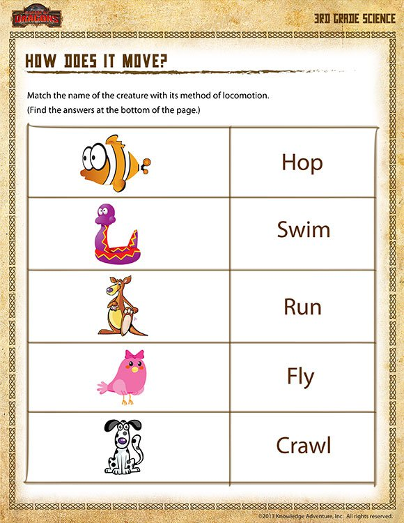 How Does It Move  View – 3rd Grade Science Worksheets
