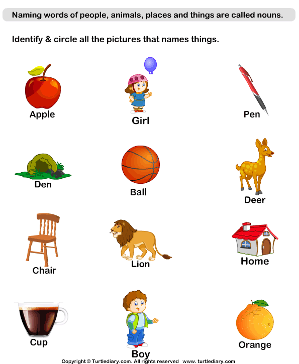 Identify Thing Nouns Worksheet