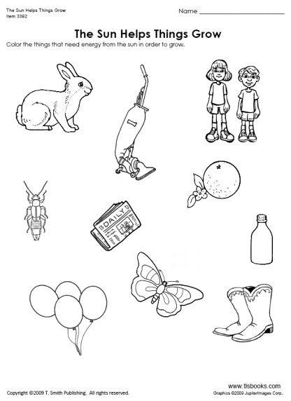 Kindergarten Science And Thinking Skills Worksheets