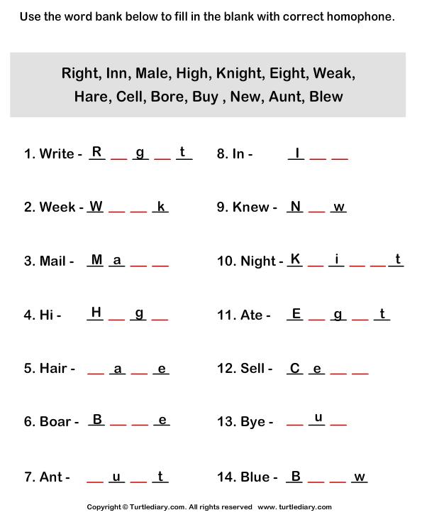 Make Homophones Worksheet