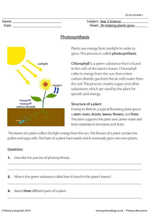 Photosynthesis Starts With Worksheet Answers Worksheets For School