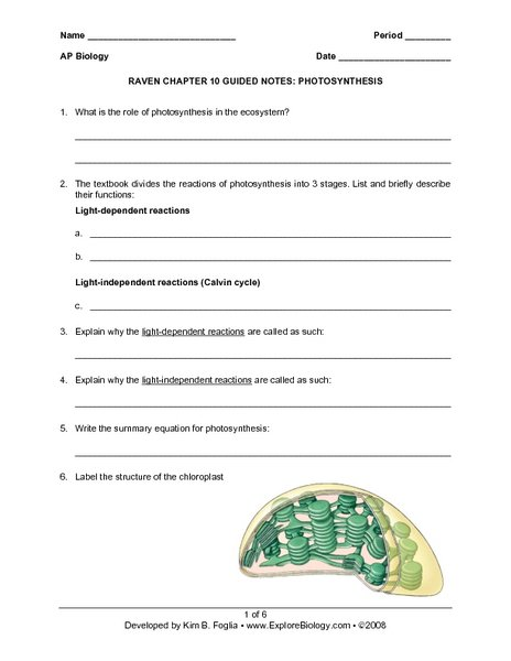 Raven Chapter 10 Guided Notes  Photosynthesis Worksheet