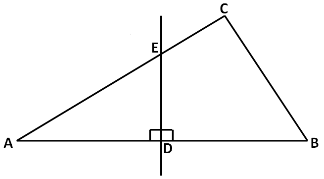 Special Line Segments In Triangles Worksheet