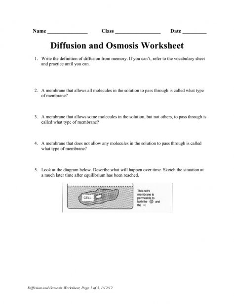 Worksheet Template   Practice Osmosis Problems Youtube Osmosis