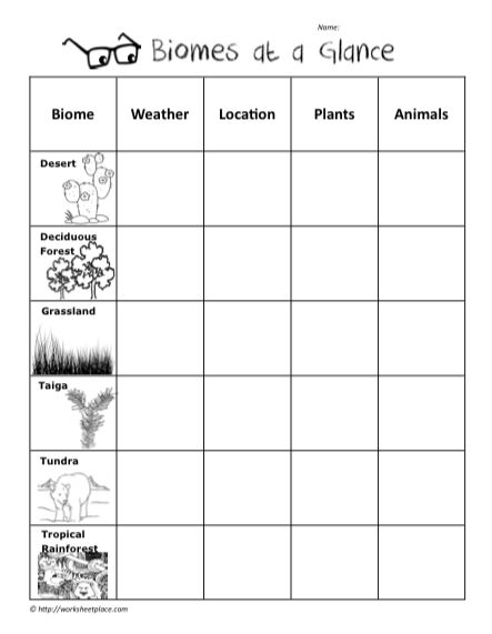 1000+ Images About Science On Free Worksheets Samples