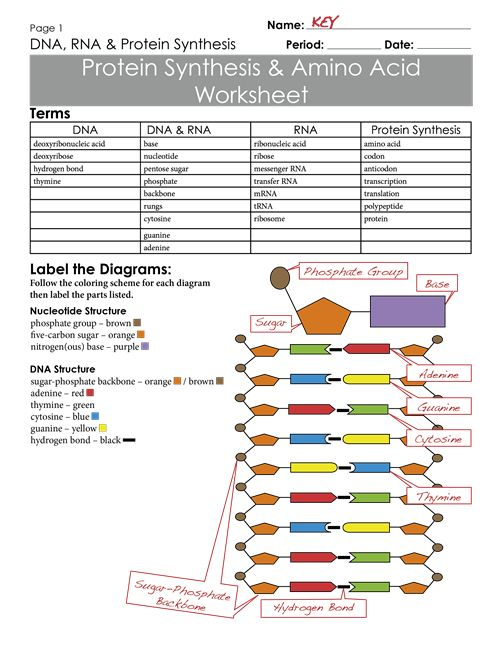 87 Best Molecular Images On Free Worksheets Samples