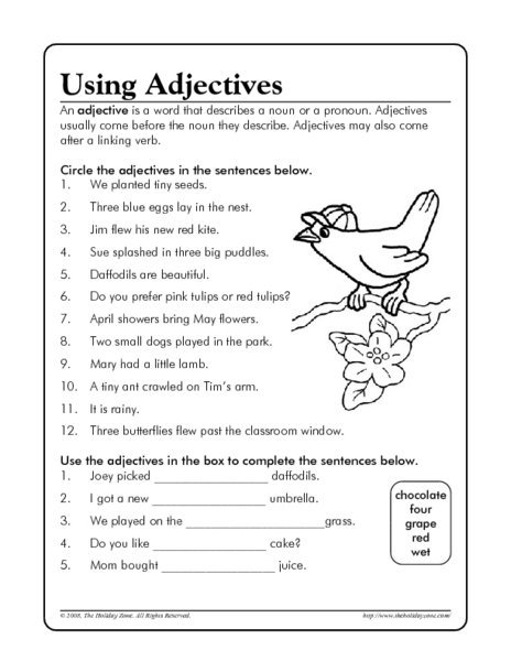 Adjective Worksheets For 5th Grade Worksheets For All