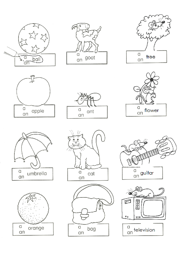 Article A And An Worksheets For Kindergarten Article Worksheets