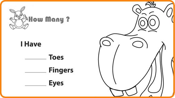 Body Parts Worksheets For Kindergarten