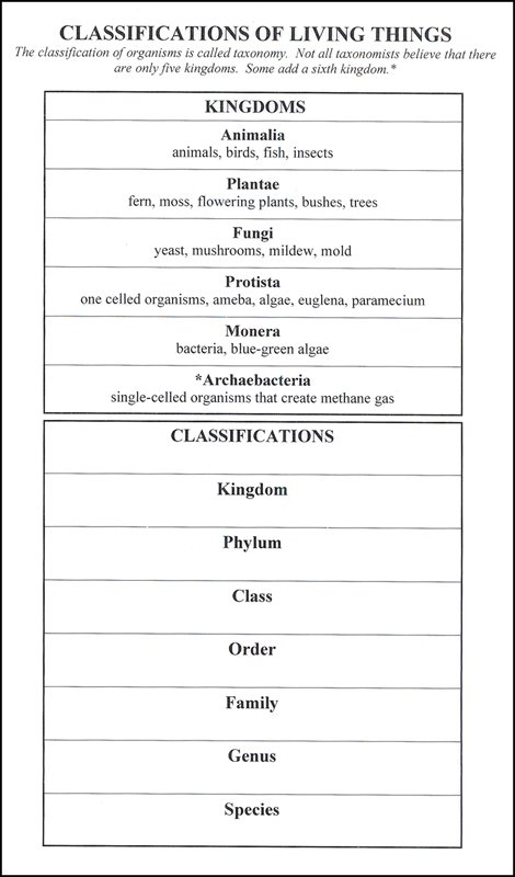 Classification Of Organisms Worksheets Worksheets For All